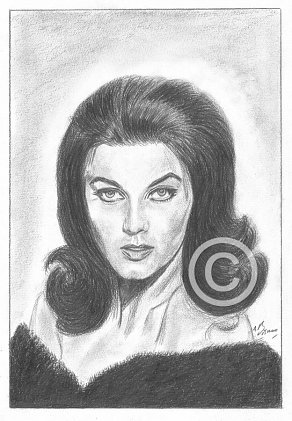 Ann Margret Pencil Portrait