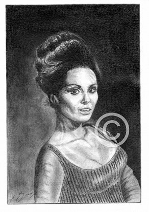 Daliah Lavi Pencil Portrait