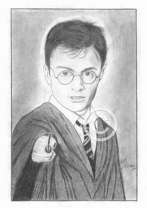 Daniel Radcliffe Pencil Portrait