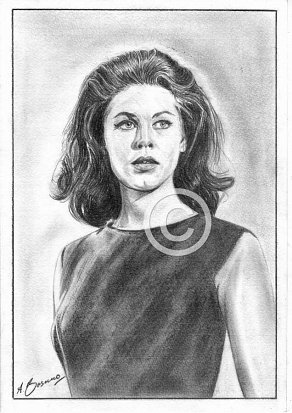 Elizabeth Montgomery Pencil Portrait