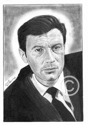 Laurence Harvey Pencil Portrait