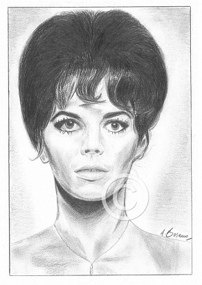 Natalie Wood Pencil Portrait