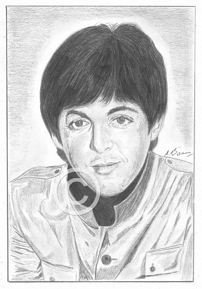 Paul McCartney Pencil Portrait