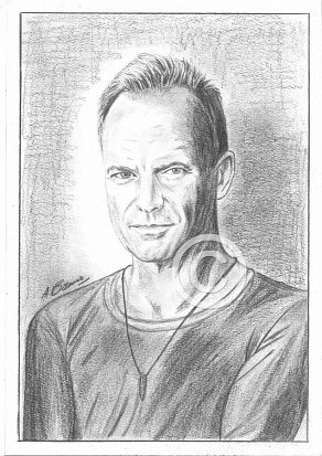 Sting Pencil Portrait