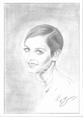 Twiggy Pencil Portrait