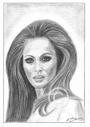 Ursula Andress Pencil Portrait