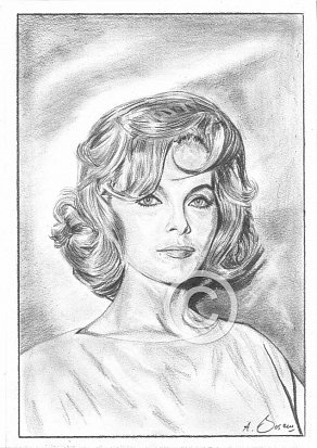 Virna Lisi Pencil Portrait
